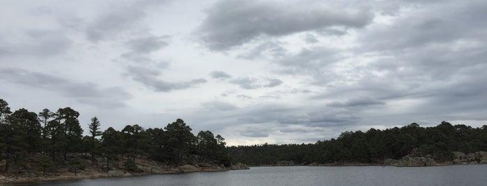 Lago De Arareko is one of Lugares favoritos de Ursula.