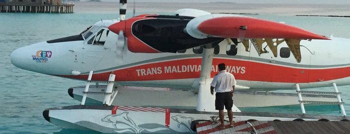 Seaplane Platform is one of Tata 님이 좋아한 장소.