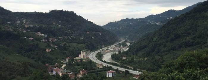 Bektaş Mobilya &Dekorasyon is one of Tempat yang Disukai Yalçın.