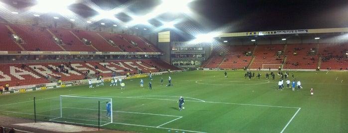 Oakwell Stadium is one of David'in Beğendiği Mekanlar.