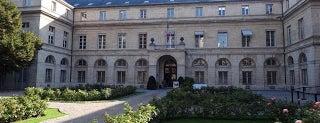 Ministère de l'Enseignement supérieur et de la Recherche is one of Mapping Giuseppe Penone's work en plein air.