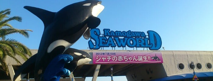 Kamogawa Sea World is one of Posti che sono piaciuti a Masahiro.