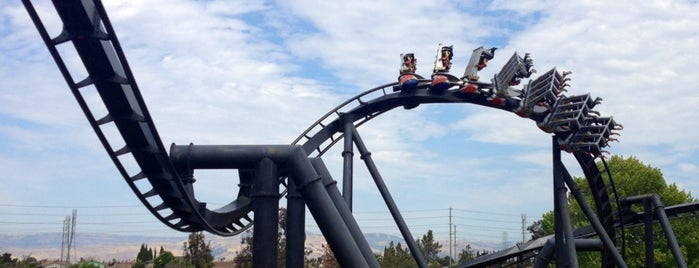 California's Great America is one of The Most Popular Theme Parks in U.S..