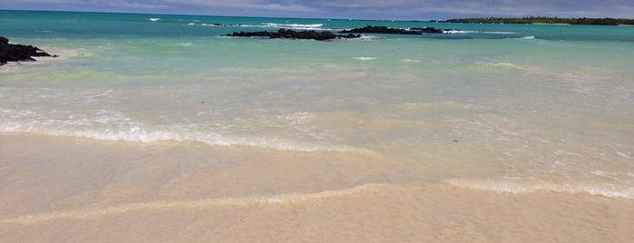 Playa El Garrapatero is one of สถานที่ที่ Antonio Carlos ถูกใจ.