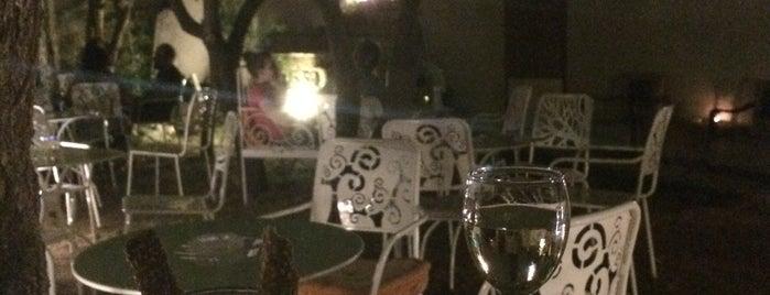 Octopus wine bar is one of Lieux qui ont plu à Constantine.