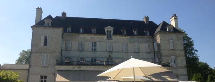 Château de Saulon-la-Rue is one of Alainさんのお気に入りスポット.
