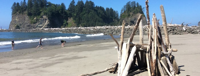First Beach is one of Olympic National Park 💚.