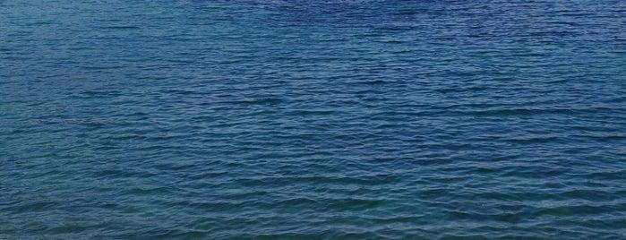 Puerto Deportivo de Sóller is one of Posti che sono piaciuti a Carlos.