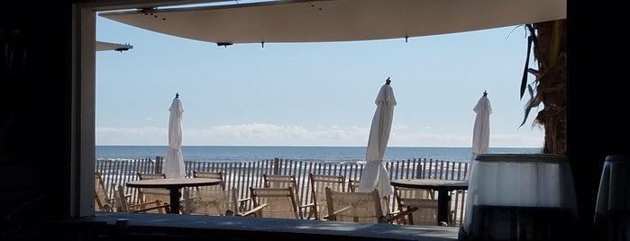 Bungalow Beach is one of Lieux qui ont plu à Ryan.