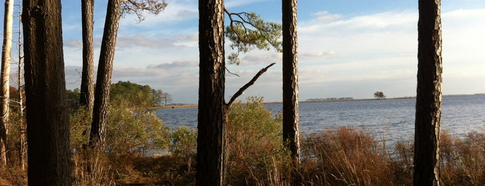 Blackwater National Wildlife Refuge is one of New place.