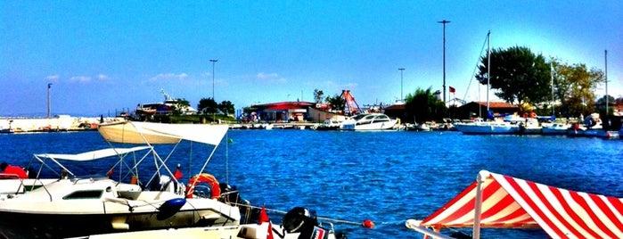 Balıkçılar Çay Bahçesi is one of สถานที่ที่ MEHMET YUSUF ถูกใจ.