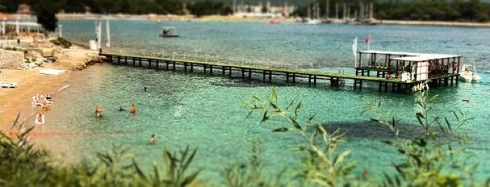Club Med Kemer Tatil Köyü is one of Tempat yang Disukai Dragon-f.