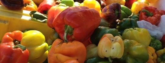 Santa Barbara Certified Farmers Market is one of Tempat yang Disimpan Fletch.
