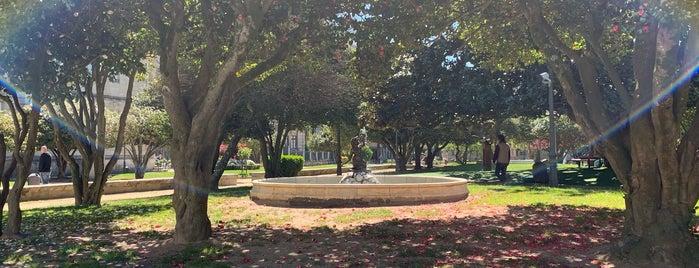 Parque de la Alameda is one of Pontevedra.