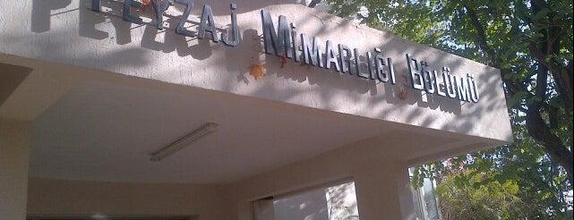Peyzaj Mimarlığı Bölümü is one of Orte, die HaliI gefallen.