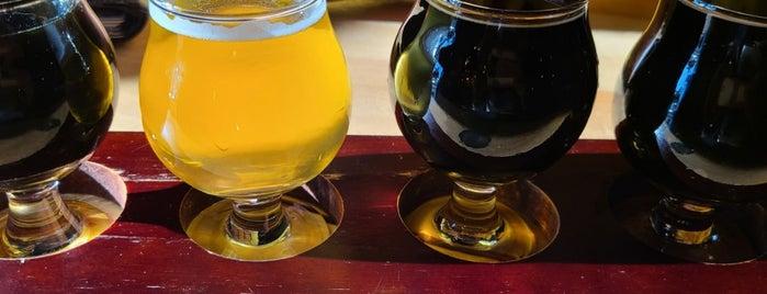 Hidden Springs Ale Works is one of Beer time.