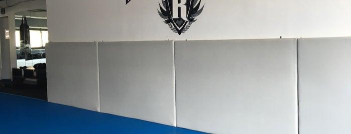 Team Redzovic Brazilian Jiu Jitsu Lincoln Square is one of Tempat yang Disukai Mark.