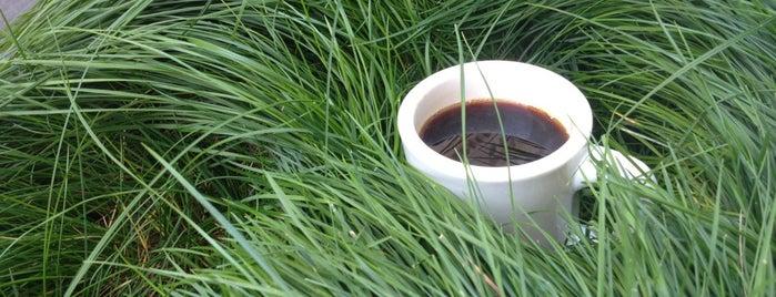 Legitimate Espresso & Coffee