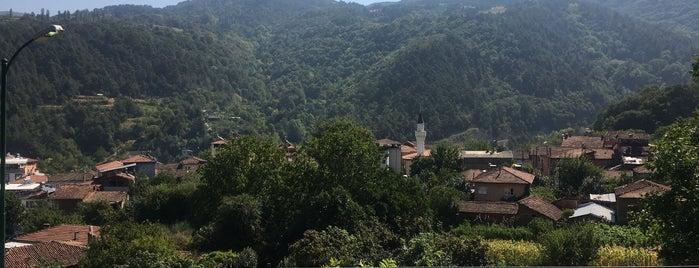 Doğancı Köy Sofrası is one of Locais salvos de 🌸Belly.