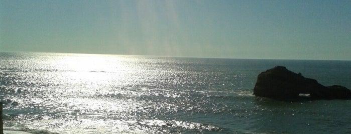 Hotel Sofitel Biarritz le Miramar Thalassa Sea & Spa is one of Hotspots Wifi Orange - Vacances.
