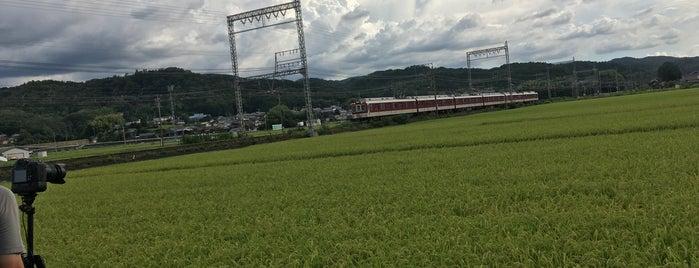 名張市 is one of Shigeoさんのお気に入りスポット.