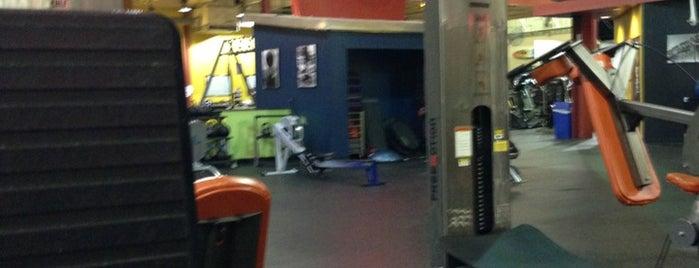 Gold's Gym is one of สถานที่ที่ Charlotte ถูกใจ.