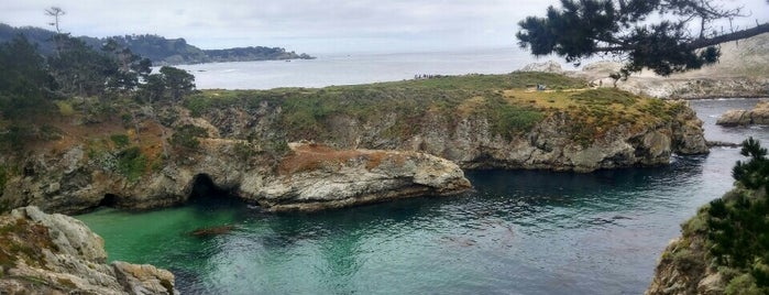 Point Lobos State Reserve is one of Fun in the Sun.
