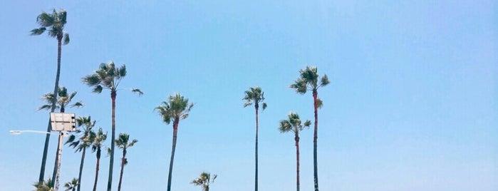 Venice Beach is one of Fun in the Sun.