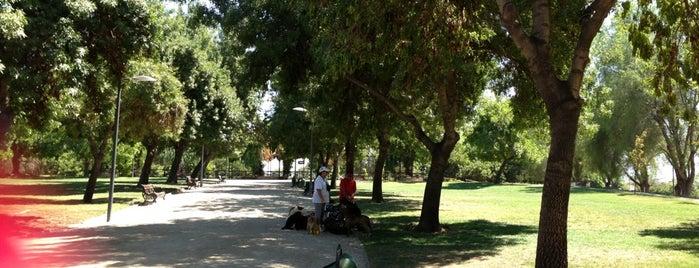 Parque La Castrina is one of สถานที่ที่บันทึกไว้ของ Nacho.