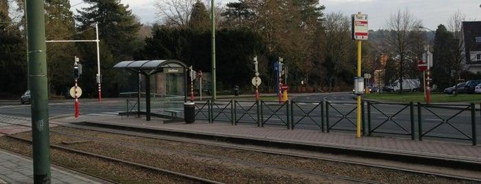 Delleur (MIVB / STIB) is one of Belgium / Brussels / Tram / Line 8.