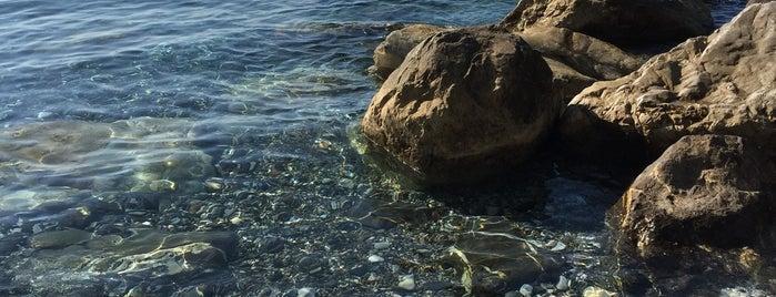 Il Molo Beach is one of Beach.
