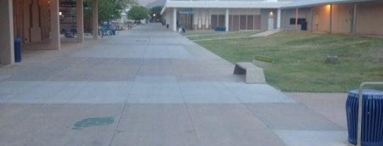 Scottsdale Community College is one of Wetextdog : понравившиеся места.