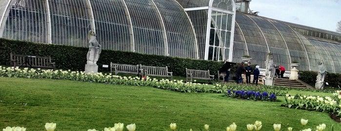 Royal Botanic Gardens is one of United Kingdom.
