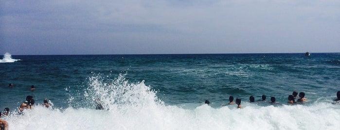Cala Treumal is one of Playas de España: Cataluña.