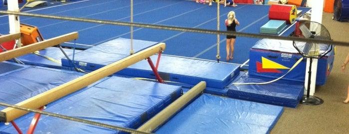 Orange County Gymnastics is one of สถานที่ที่ Cindy ถูกใจ.