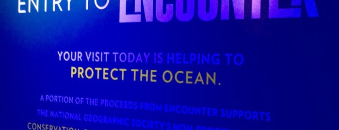 National Geographic Encounter: Ocean Odyssey is one of Adamさんのお気に入りスポット.