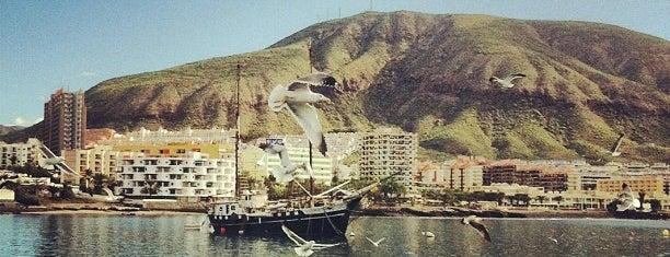 Puerto de Los Cristianos is one of Islas Canarias: Tenerife.
