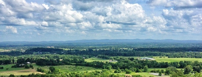 Bluemont Vineyard is one of DC.