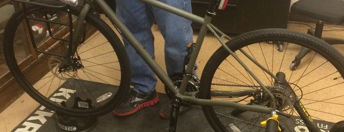 Bay Area Schwinn is one of Bike Shops.