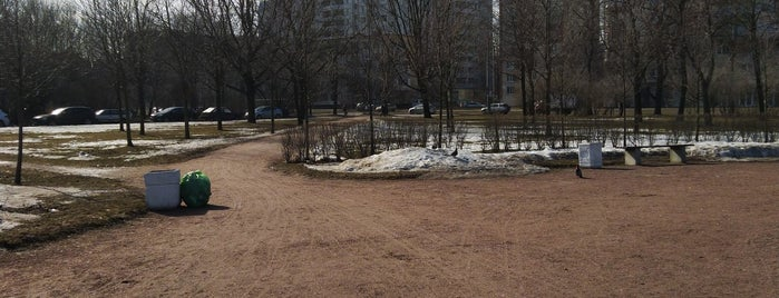 Аллея в честь жителей Фрунзенского р-на,ликвидировавших последствия аварии на Чернобыльской ас 1986 is one of Kufzuk : понравившиеся места.