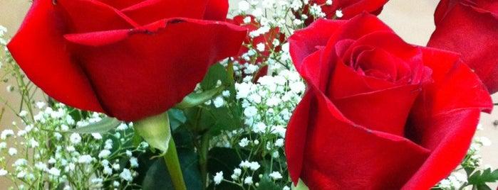 The Flower Shoppe is one of Lieux qui ont plu à Rosana.