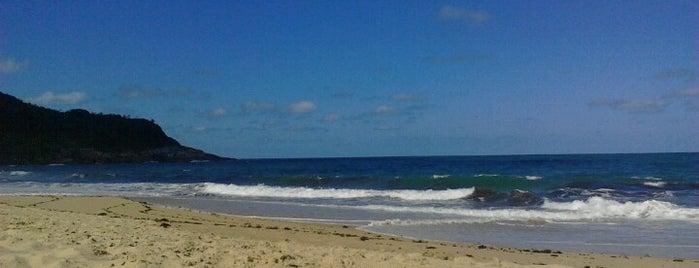 Praia do Pinho is one of A fazer Bal. Camboriú.
