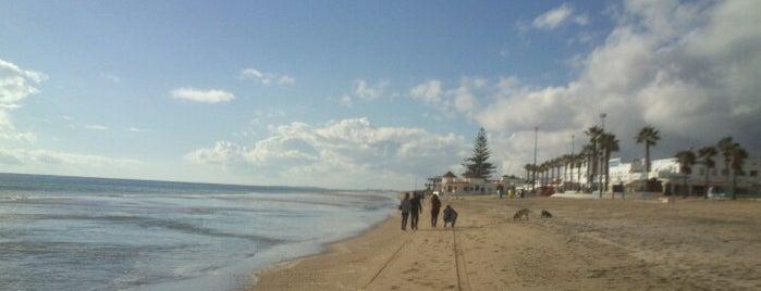 Central Playa is one of Locais curtidos por Curro.