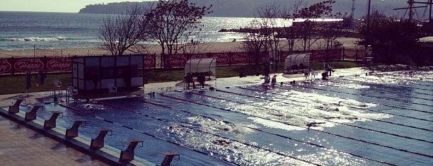 Плувен комплекс Приморски / Swimming pools is one of Varna's best.
