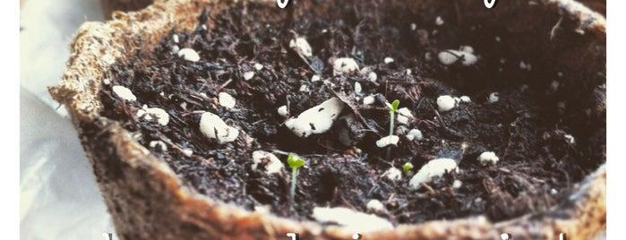 Y&R Guerilla Gardening Project is one of Tempat yang Disukai Andreas.