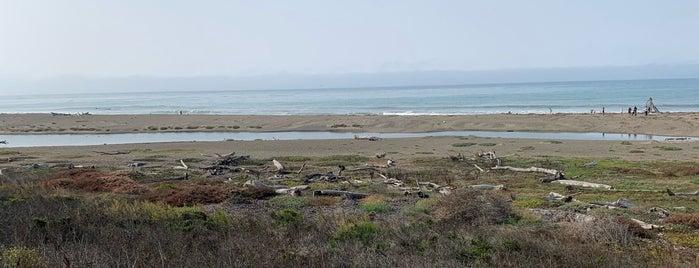 San Simeon Creek Campground is one of California road trip.