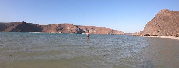 Beach is one of สถานที่ที่ Yare ถูกใจ.