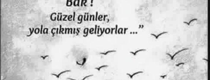 Is Bankasi Burhaniye Subesi is one of 🌜🌟hakan🌟🌛 : понравившиеся места.