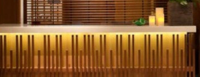 Auriga Spa @ The Setai Hotel is one of Life & health essentials.