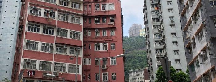 Spring Garden Lane is one of HK's Roads Path.